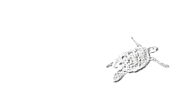 A member of Dream Yacht Charters